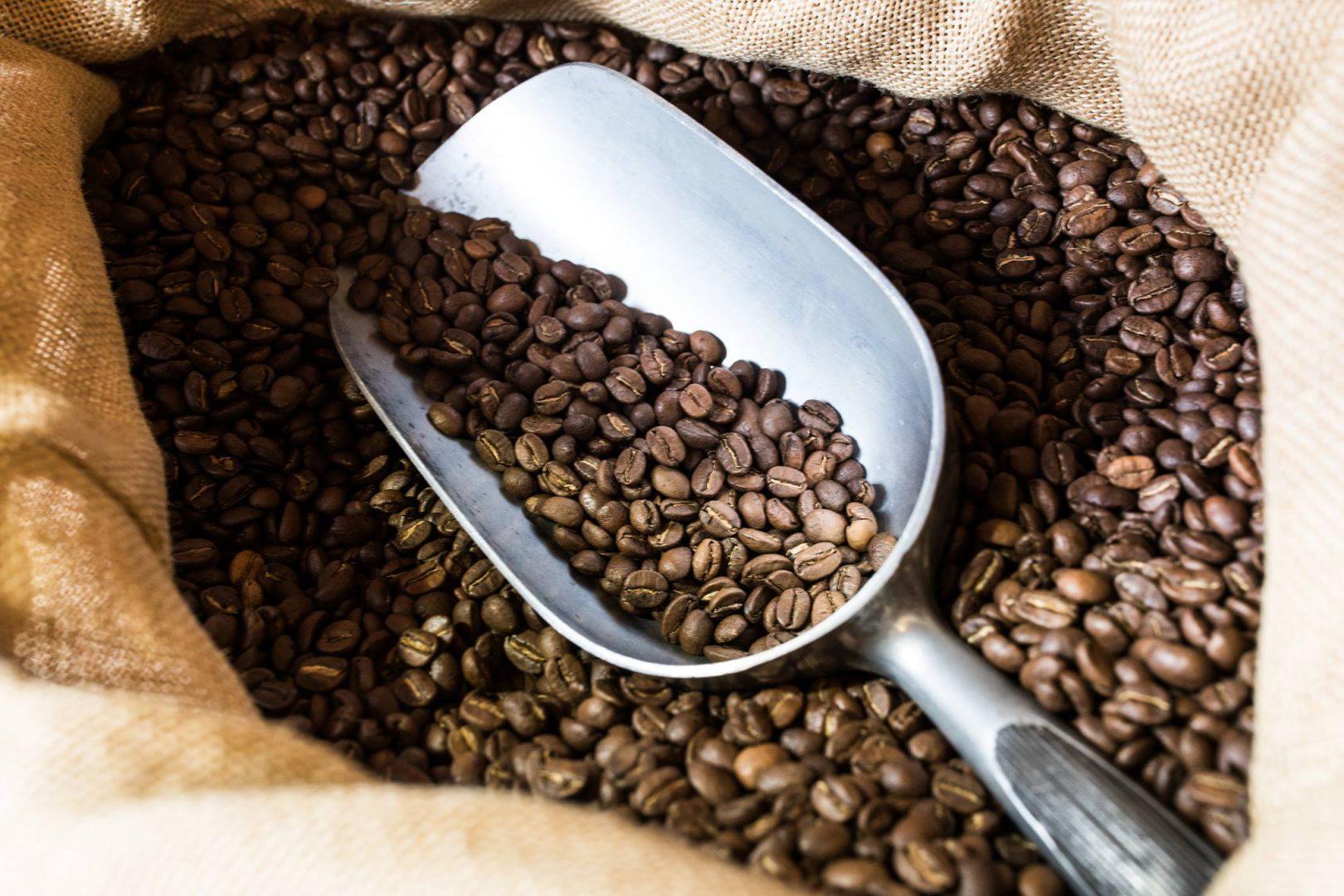 grains café vrac