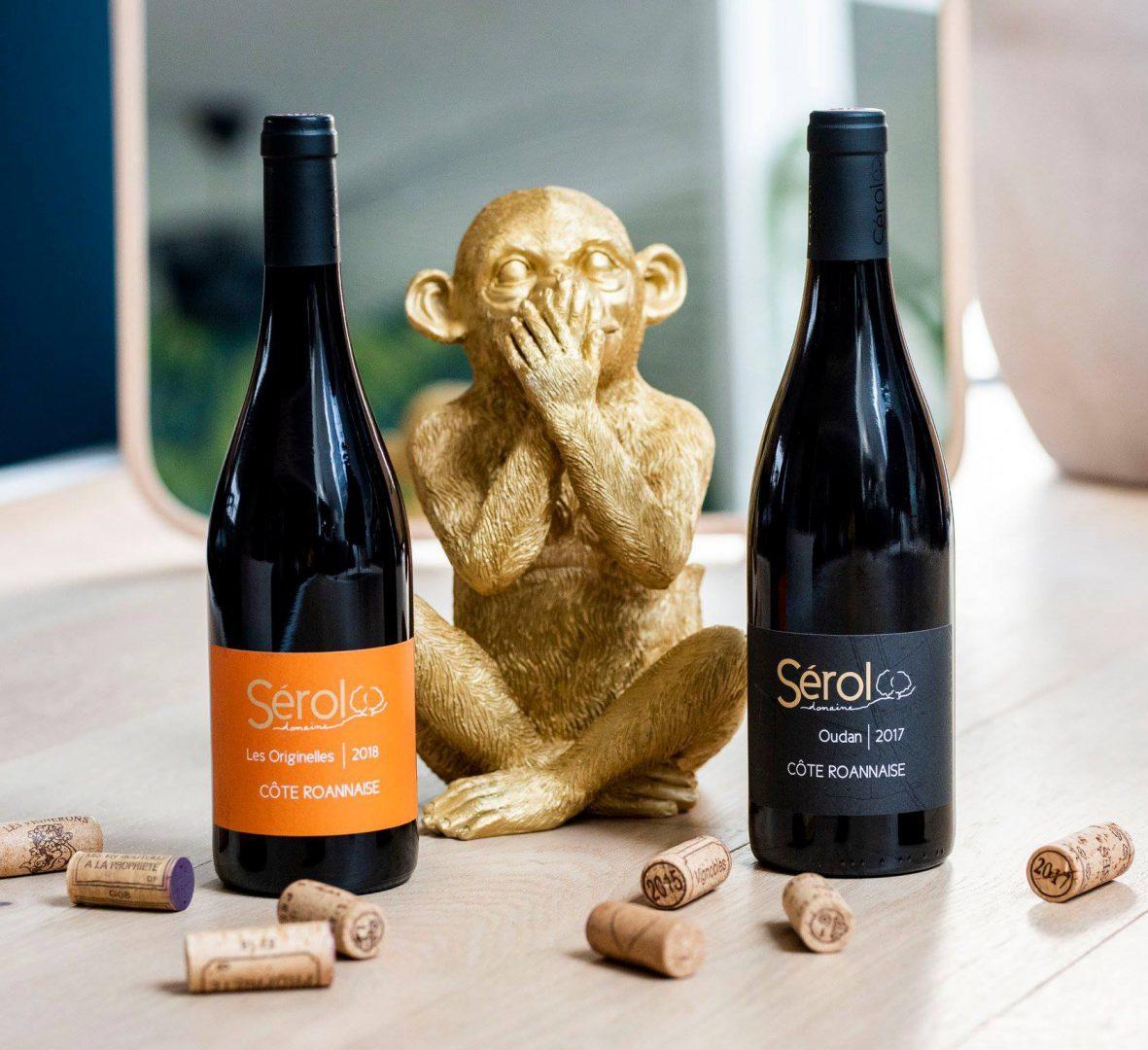 vins vallee du rhone